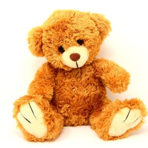 Teddy Soft Toy Bears Funny  - Alexas_Fotos / Pixabay