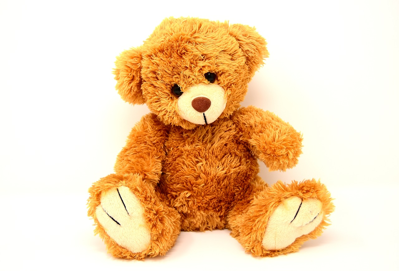 Teddy Soft Toy Bears Funny  - Alexas_Fotos / Pixabay